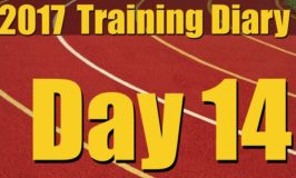 2017 Training Diary: Day 14 – 1K Intervals and Sledgehammers