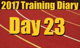2017 Training Diary: Day 23 – Chest, Biceps and Triceps Workout