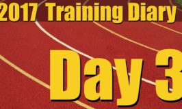 2017 Training Diary: Day 3 – Chest, Biceps and Triceps Workout