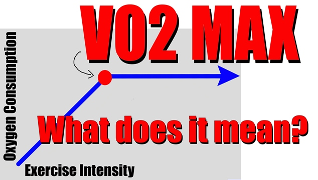 what does VO2 max mean?